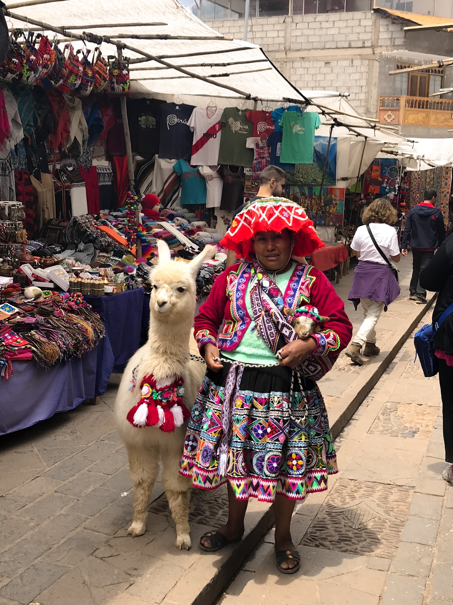 Il mio viaggio in Perú – Machu Picchu